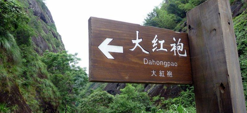 DHP thata way