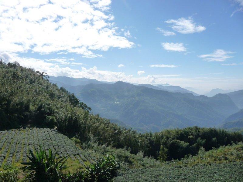 Rueilli View