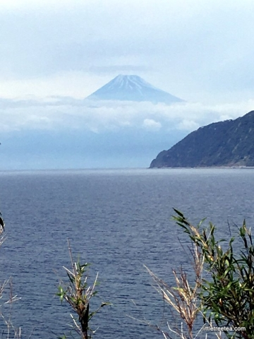 View of Mt Fuji