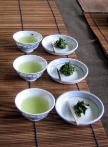 Japan tea tasting