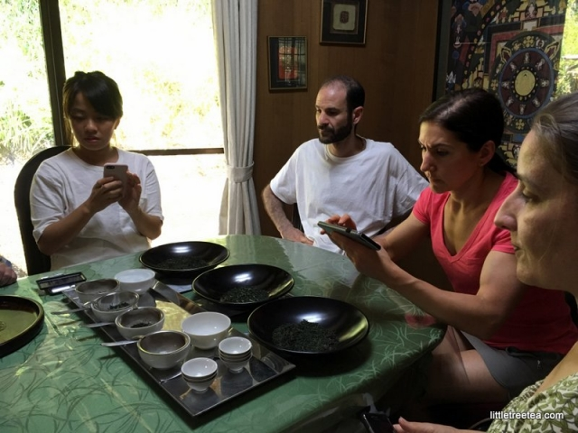 Learning to evaluate Japanese tea