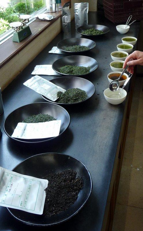tasting Japanese teas